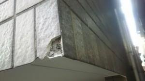 外壁タイル補修3